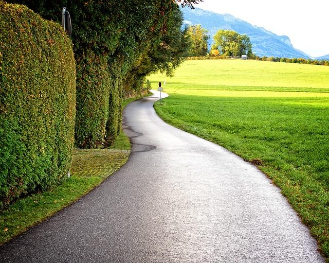 cesta a upravený živý plot